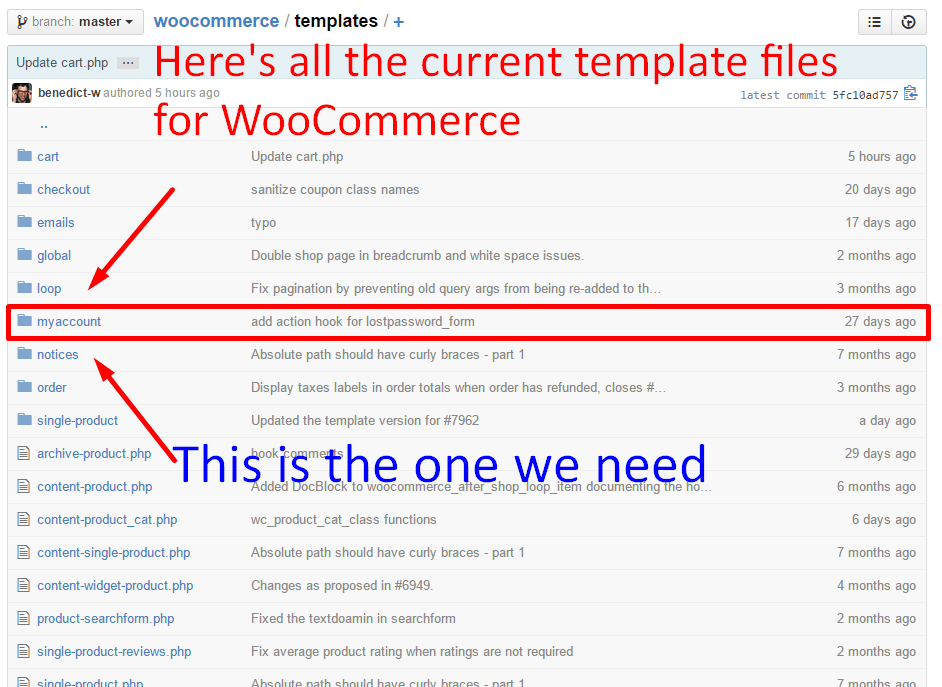 WooCommerce Template Files